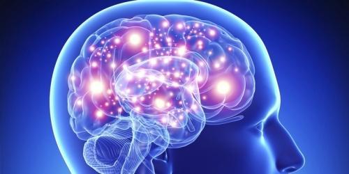 Как остановить деградацию мозга